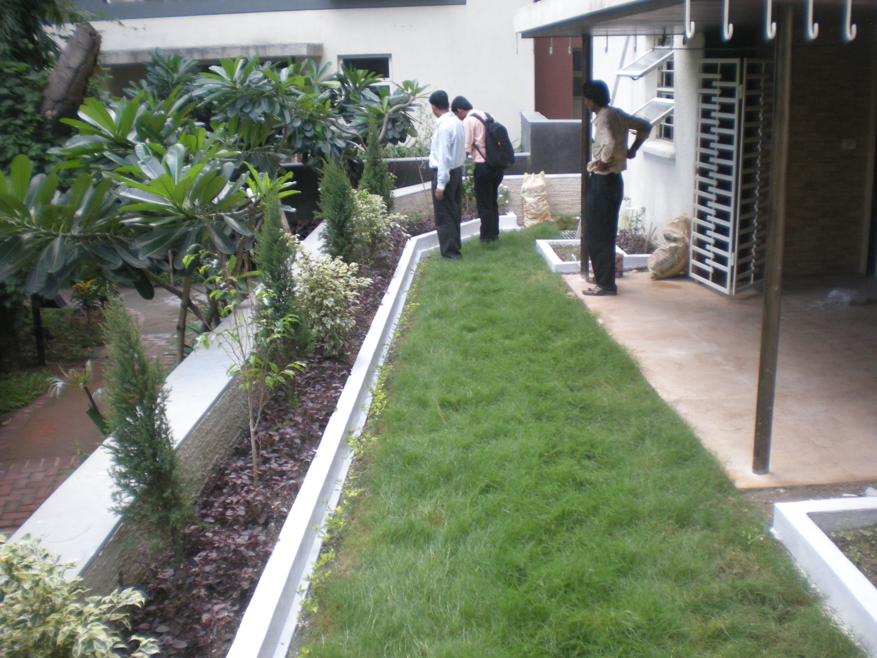 Terrace landscaping sudharma krishi consulantants for Terrace krishi