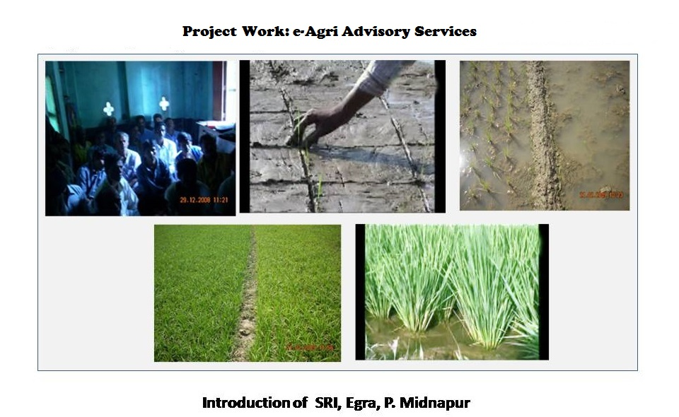 crop-advisory-05