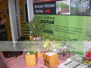 Display of Green gifting concept in New Delhi