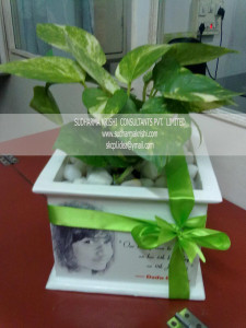 Personalized green gifting