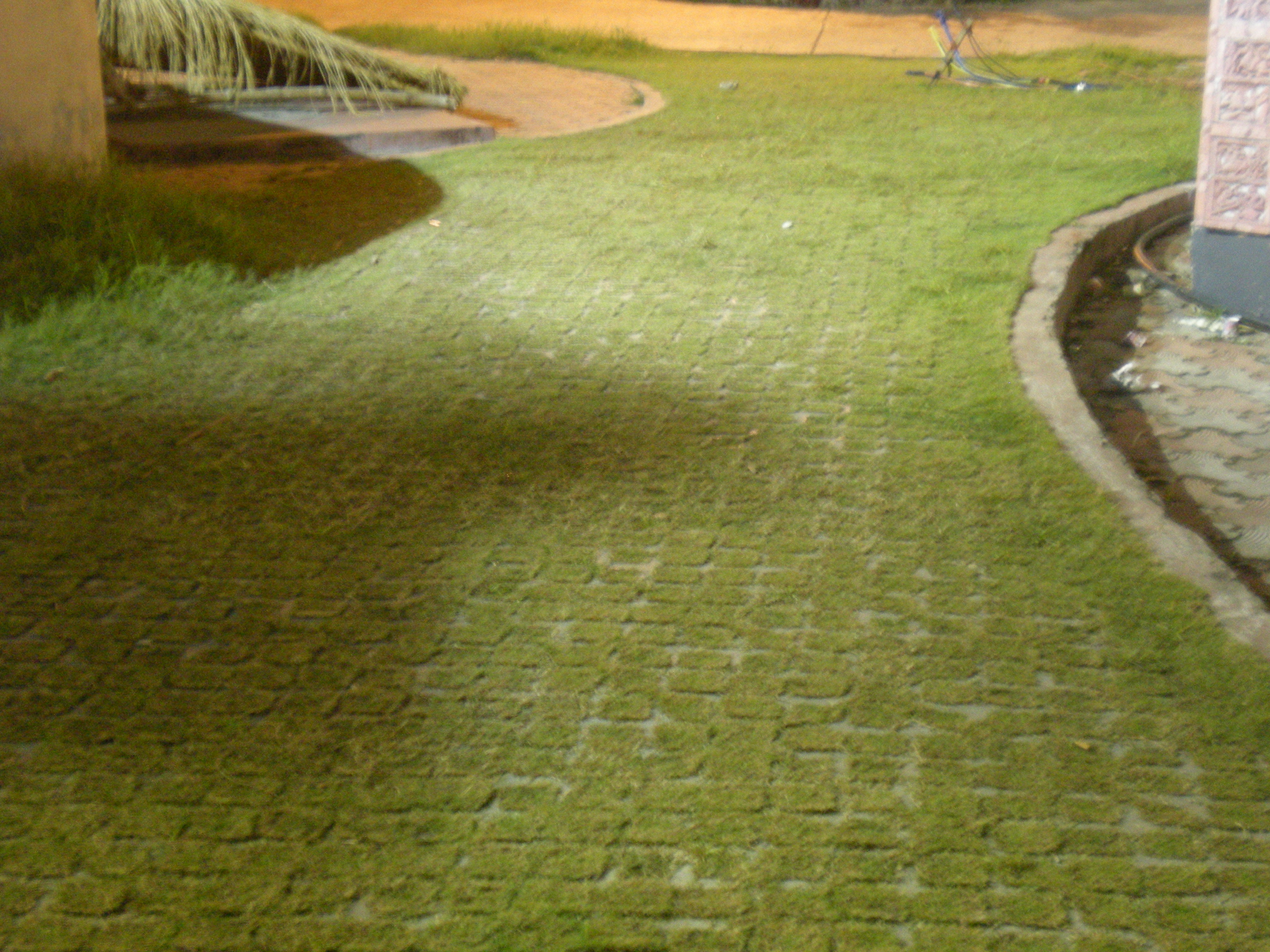 Walk way a project with in a residential complex for Terrace krishi