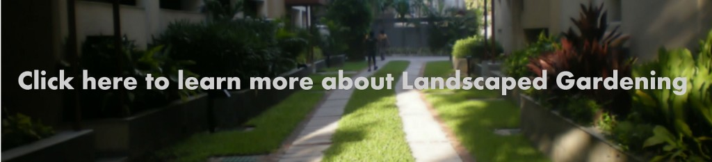 a-smart-landscaping-in-a-residential-complex_clicler_here-large